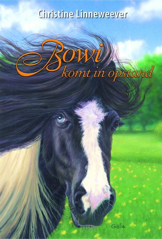 Bowi Komt In Opstand Paardenboeken Nl