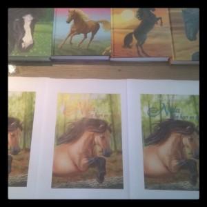 Lastig nieuwe cover kiezen paardenboeken nofilter