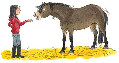 Ponypaniekp18toenadering