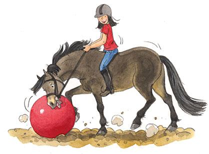Ponypaniekp64metbal