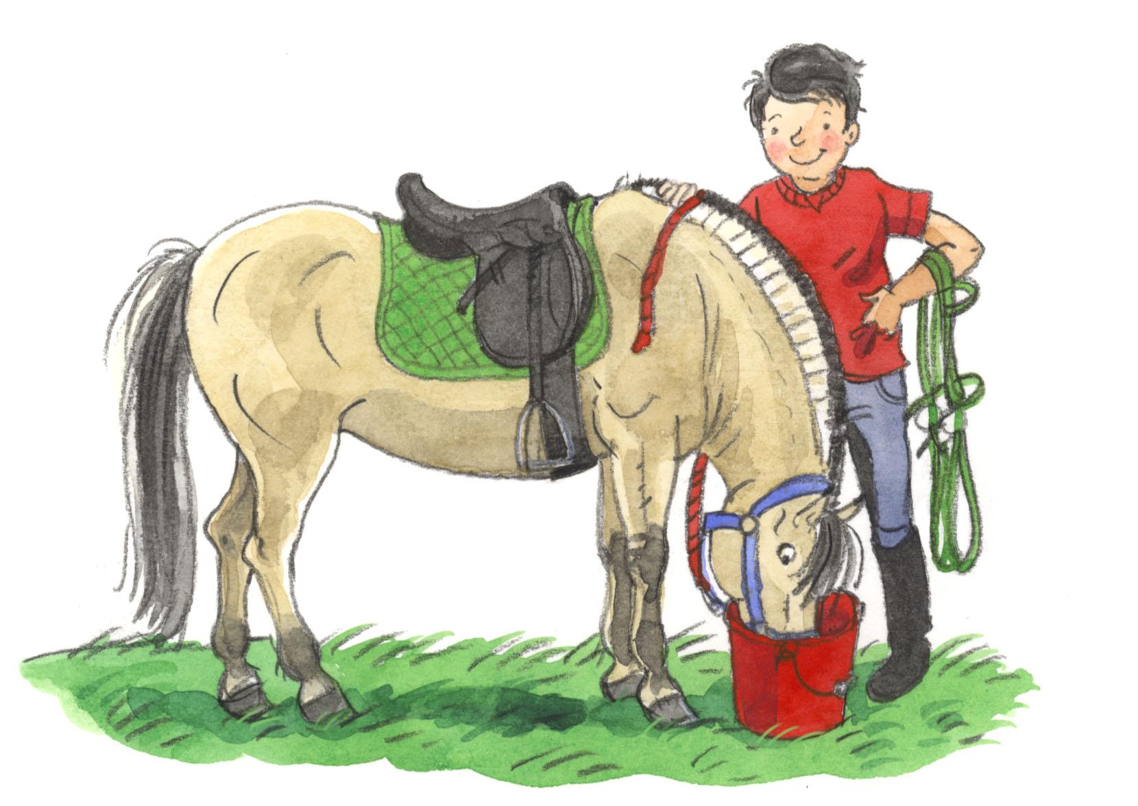 Paardenboeken Nl D 233 Site Voor Liefhebbers Van Paardenboeken
